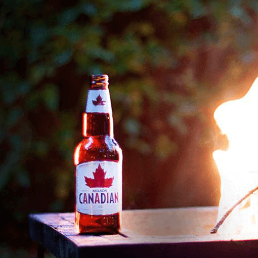 Molson Canadian Beer Bottle near firecamp